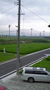 Noyaku_2