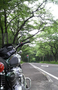Sakunami