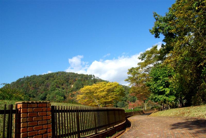 Higasizawa0711