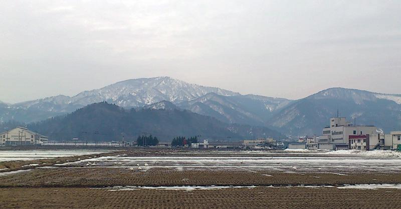 Hakutyo120411