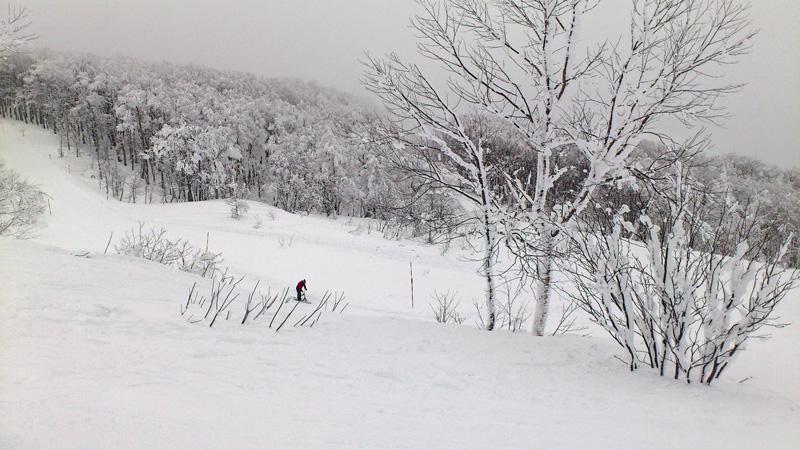 Snowscoot02_2